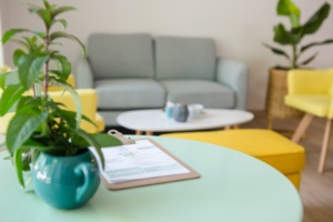 photo salon plante et canapé Tea lab