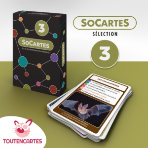 Carte 7 familles SoCartes Tea Lab 4